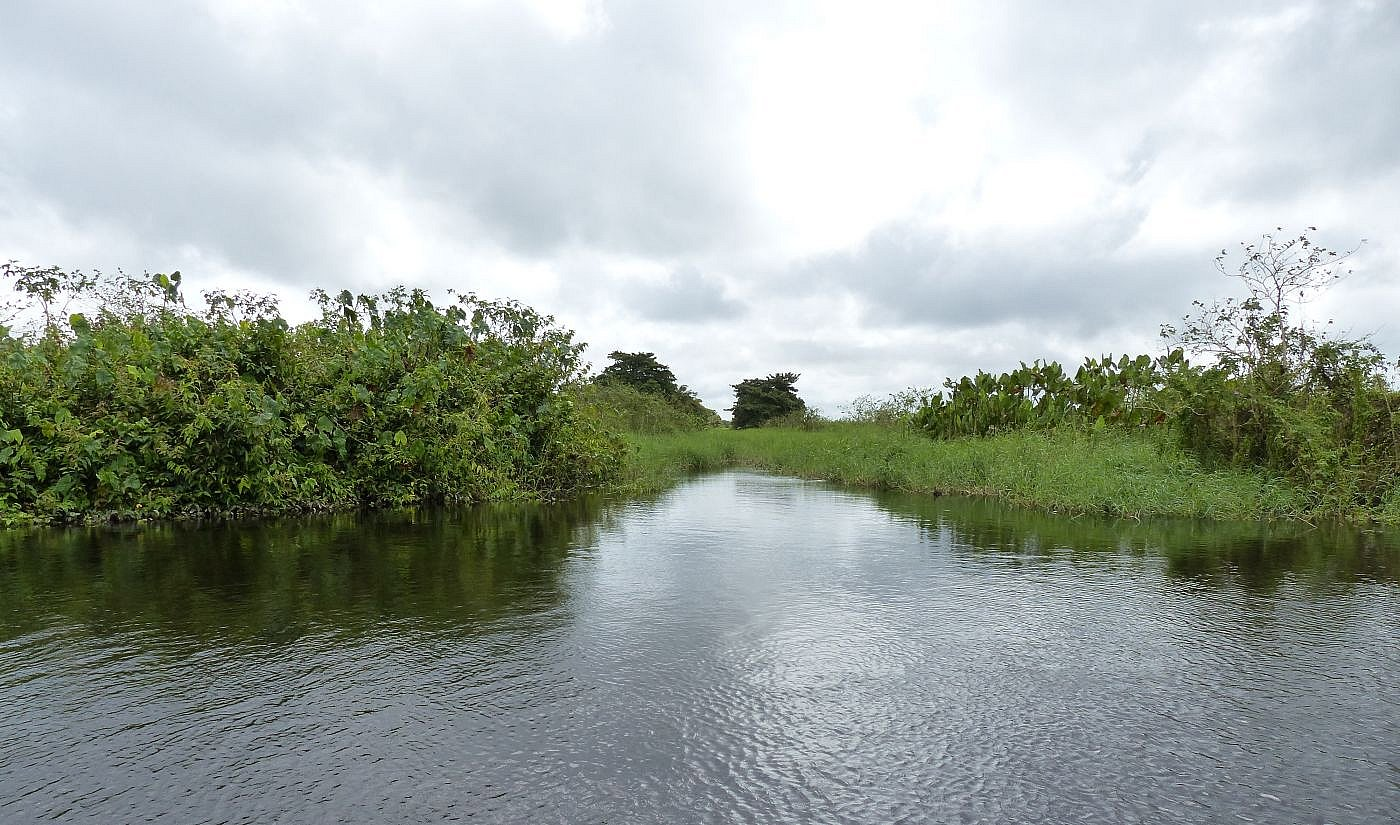 Canal Roy Bouché